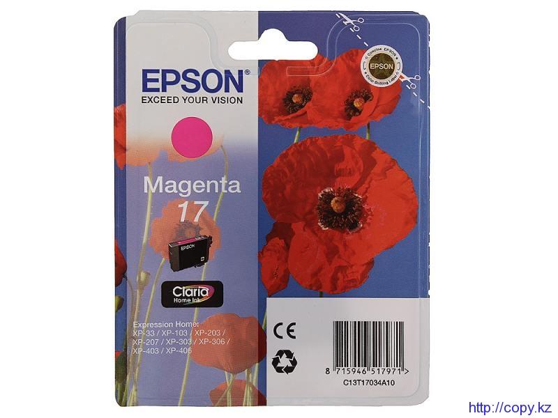 Картридж Epson 17 (C13T17034A10)